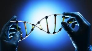 Banca Dati DNA