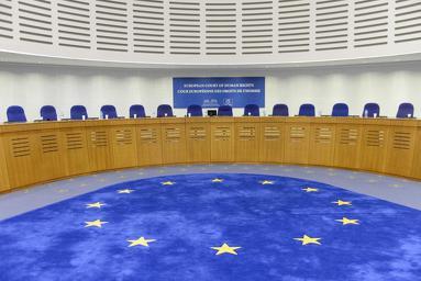 La Corte EDU rigetta la richiesta di rinvio alla Grande Camera del caso Viola c. Italia. La Sentenza è definitiva.