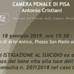 Il reatodi istigazione al suicidio ex art. 580 c.p. La rilevanza del bene vitaalla luce dell'ordinanza della Consulta n. 207/2018 nel caso Cappato (Pisa, 18 gennaio 2019)